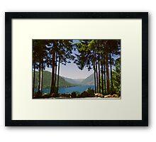 Lake Cushman in Summer Framed Print