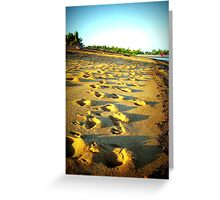 Beach Steps - Flying Fish Point, Nth Qld Greeting Card