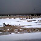 Snowy Ocean by mekea