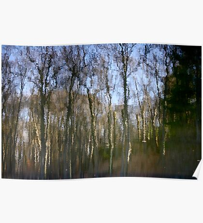 Trees in the River Poster