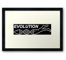 Evolution DNA Jesus fish Framed Print