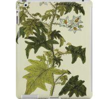 Plantarum Indigenarum et Exoticarum - Lukas Hochenleitter und Kompagnie 1788 - 360 iPad Case/Skin