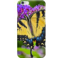 Papilio Glaucus - Eastern Tiger Swallowtail | Middle Island, New York iPhone Case/Skin