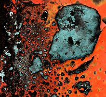 Rust and Peeled Paint by Robert Dayton