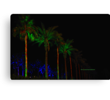 Scenes from Cali XI Canvas Print