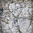 Broken hearts in stone by Susana Weber