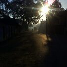 Road To Village by anandbakshi