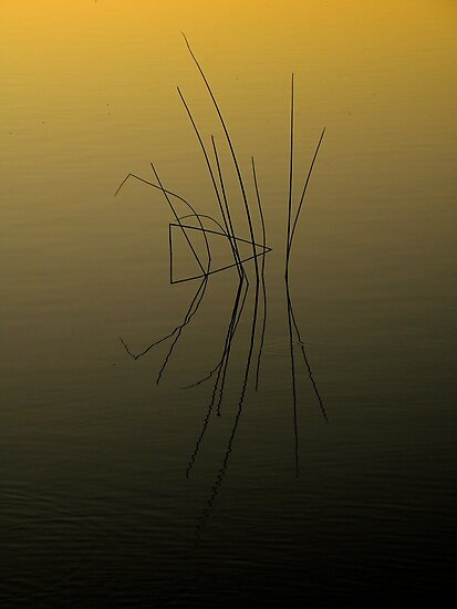 Natural Abstraction ~ Part Three by artisandelimage