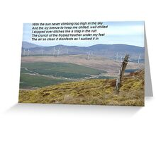 Donegal Disinfectant at Work Greeting Card