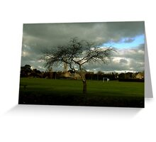 The tree that stands still. Greeting Card