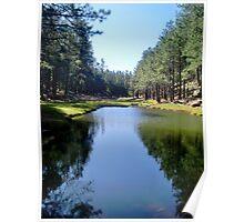 Woods Canyon Lake - runoff Poster