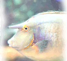 Bluespine Unicorn Fish by A.R. Williams