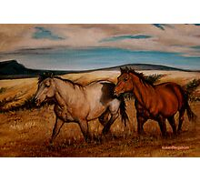 Prairie Pastures Detail Study Photographic Print