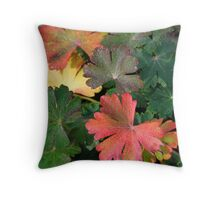 Dew Drops 3 Throw Pillow
