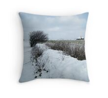 Typical Texel landscape in snow Throw Pillow