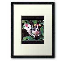 Corgilicious Framed Print