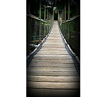 Suspended Over Mena - Mena Creek, Nth Qld Photographic Print