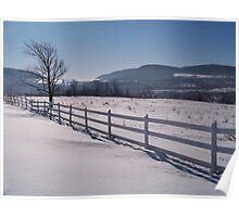 Winter Pastures Poster