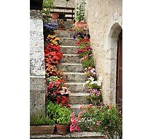 Pretty Steps, France Photographic Print