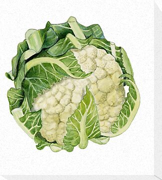 Cauliflower by Maureen Sparling