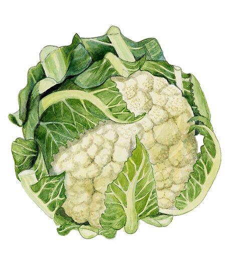Cauliflower by Maureen Sparling