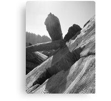 Driftwood - Redwoods National Park, California Canvas Print