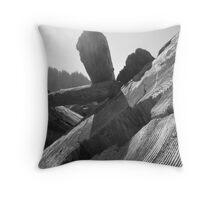 Driftwood - Redwoods National Park, California Throw Pillow
