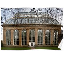 Victorian Temperate Palm House Poster