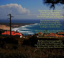 Summer Days-(Picture taken in Azoia, Portugal) by Wayne Cook
