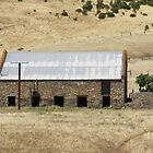 Old shearing shed at &#x27;Rapid Bay&#x27; Sth Coast, Sth. Australia. by Rita Blom