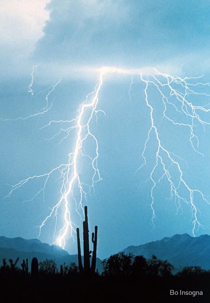 Lightning Rain by Bo Insogna