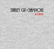 Stanley Cup Champions (Go Hawks) Unisex T-Shirt