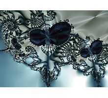 Blue Butterfly Lace III Photographic Print