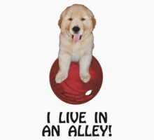 "Funny ""I Live In An Alley"" Bowling Light T-Shirts by trevortrent"
