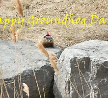 Happy Groundhog Day! by Mike Oxley