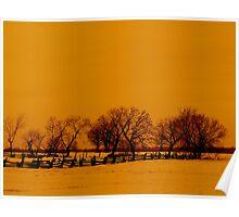 Tangerine Winter Poster