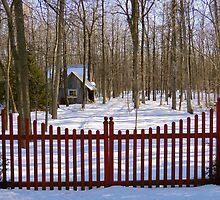 Gated Community by Lynn Armstrong