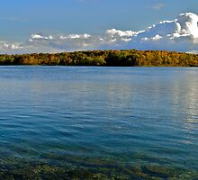 Autumn on the River by Lynn Armstrong