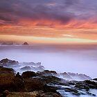 Weston Beach & Bird Island, Point Lobos, Carmel, CA by Maria Draper