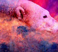 Sky Bear by Veronica Schultz