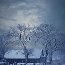 Winter Bliss by Pat Moore