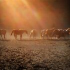 Dusty Equine Sunset by Autumn Long