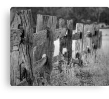 Olde fence Canvas Print