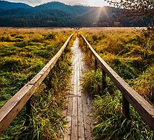 Boardwalk, October in Washington, Pacific Northwest by va103
