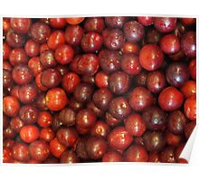 Little red plums Poster