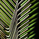 Green Chairs by Gisele Bedard