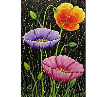 COLOURFUL TULIPS Photographic Print