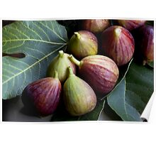 Figs and Leaves Poster