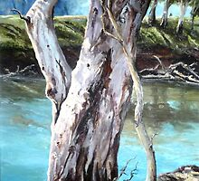 River Gum by Diko