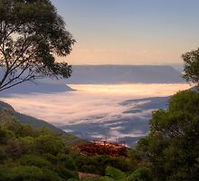 Mists Of Leura  - Blue Mountains World Heritage Area -The HDR Experience by Philip Johnson